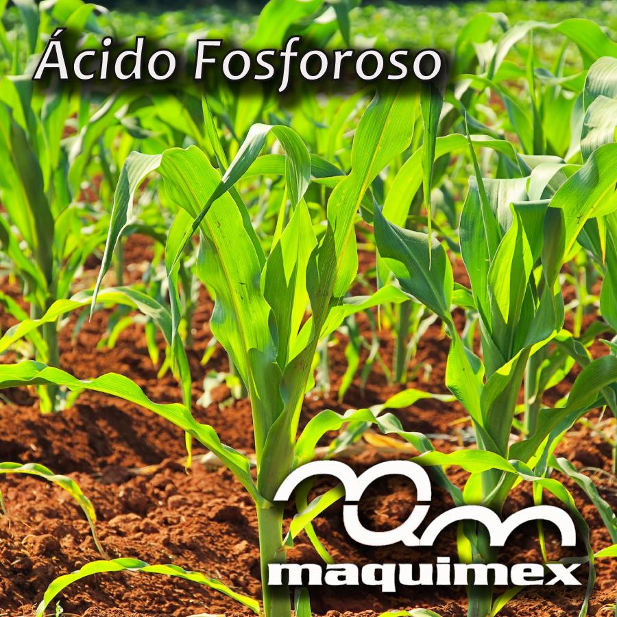 ¡Haz crecer tus cultivos!, El ácido fosforoso en agricultura y otras areas